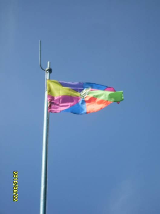 Флаг ДОЛ